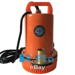 Farm & Ranch Solar Powered Submersible Deep Well DC Water Pump, 24V, 8LPM