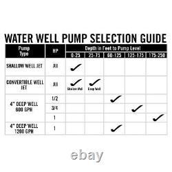 Potable Water Deep Well Pump 2-Wire Motor Stainless Steel Threaded Female 1 HP